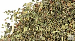 Sinhal Papaya Leaves - Carica Papaya, Grade: Medicinal