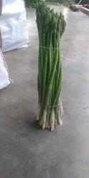 Karnataka Asparagus, Vegtabl, Packaging Size: 1kg