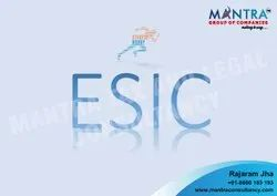 PF ESIC Registration Services