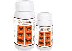 Horse & Equine Calcium Supplement And Tonic
