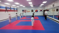 Karate Mats 25 Mm Thick Interlocking Type (1 Mtr x 1 Mtr)