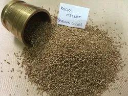 Organic Kodo Millet