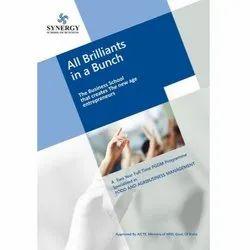 Conceptual Brochure Designing Services