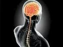 Peripheral Nerve Disorders Treatment Services