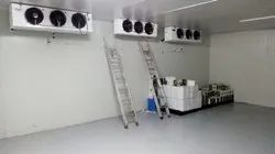 3000 MT Commercial  Cold Storage Room