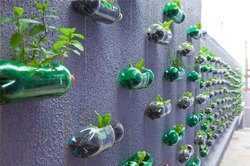 Natural Bio Wall With Recycle Bottles