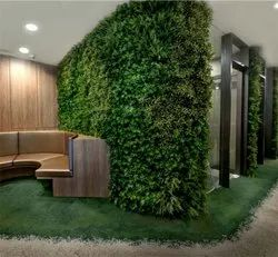 Vertical Garden Wall Panel
