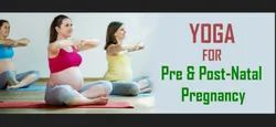 Pre and Post-Natal Pregnancy Therapy Solution