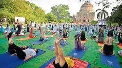 Yoga Teacher Training Course Near Me, Age Group: 20-30 Years