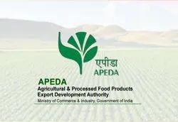 Export Consultants in Ludhiana, निर्यात
