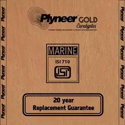 Plyneer Gold BWP Eucalyptus Waterproof Plywood