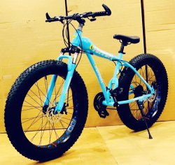 Ferrari Blue Dolphin Fat Tyre Cycle