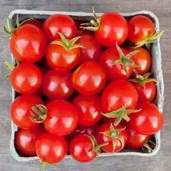 Red Fresh Cherry Tomato, Packaging Size: 5 Kg, Packaging Type: Carton