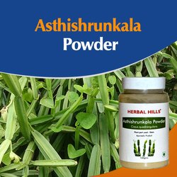 Ayurvedic Asthishrunkala Powder 100 gm Cissus Quadrangularis - Weight Loss Powder