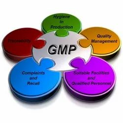 GMP Certification Service