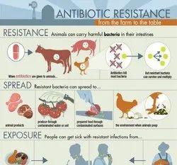 Antibiotics Residue Testing Services