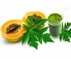 33 Herbals sweetened Papaya Leaf Juice, For Personal, Packaging Size: 100ml