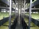Fully Automatic Weather Hydroponic Wheatgrass Unit