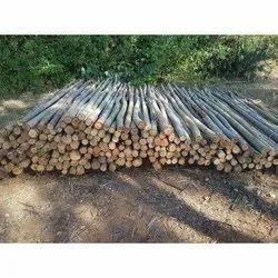 Brown Round 12 Feet Eucalyptus Wooden Pole