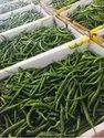 A Grade Export Quality G4 Green Chilli, Maharashtra, Features: 4 Kg