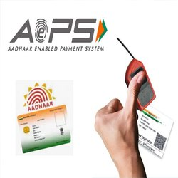 AEPS Domestic Money Transfer Service Provider