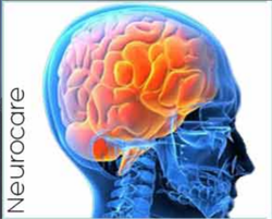 Neurosurgery Services