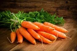 A Grade Pan India Fresh Red Carrot, Packaging Size: 50 Kg