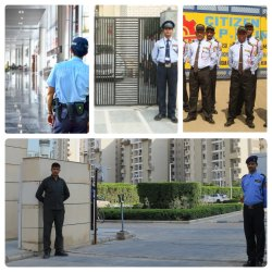 Guard Security Services For Industry