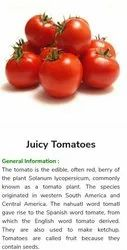 A Grade Red Fresh Tomato, Packaging Type: Crate, Packaging Size: 24