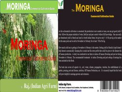 Moringa Cultivation Guide (English)