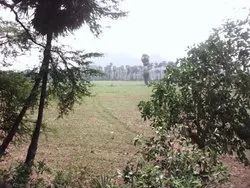 AA Groups 1100 Acres For Sale Rs:3, 000, 00/- Per Acre Andhrapradesh , India