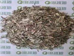 Lemongrass Powder, 20kg, Cymbopogon