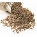 Organic Fresh Cumin Seeds