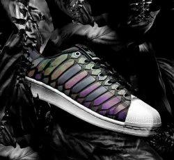 Designer Fancy Shoes