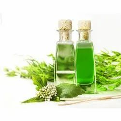 Essential Green Tea Oil