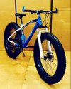 Bmw Blue Sleek Design Fat Tyre Cycle