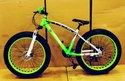 Bmw Green Sleek Fat Tyre Cycle