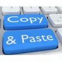 Online Copy Paste Data Entry Project