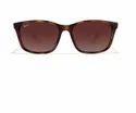 Ray Ban B4269 710 Or 13 Sunglasses