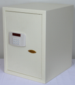 Electronic Safe Locker