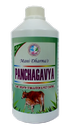 Panchagavya Biofertilizer