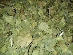 Dehydrated Ramba Leaves