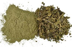 Gymnema Sylvestre Extract Powder