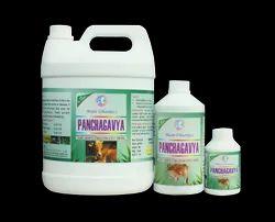 Panchakavya pesticide