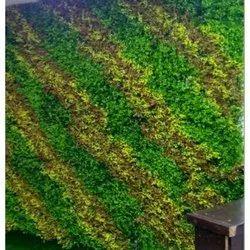 Plastic Artificial Wall Grass