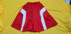 Red School Skirt