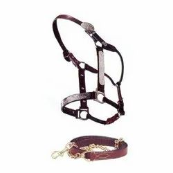 Snap Hook Leather Horse Bridle