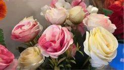 European Roses