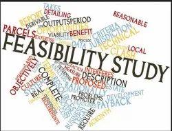 Feasibility Studies Services