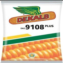 Monsanto Hybrid DEKALB 9108 CORN- Maize seeds, For Agriculture, Packaging Type: Packet
